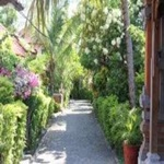 Paradise-Palm-Beach-Bungalows
