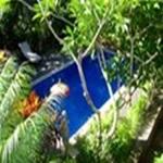 Tropical-Bali-Hotel
