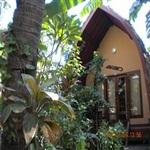 Banana-Leaf-Bungalow